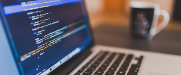 Vue.js 2.0 Javascript