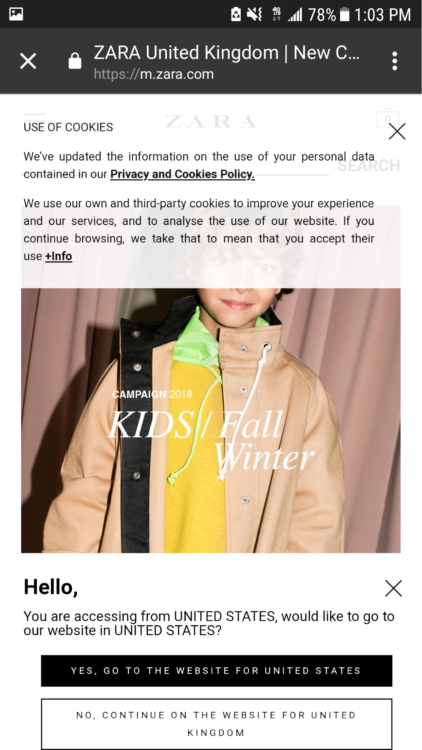 Cookie policy and multiple popups on Zara.com
