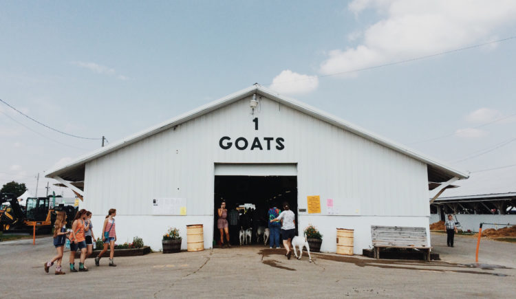 "People and goats entering a white building that says, ""1 GOATS"" on it"